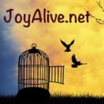 Joy Stories: Living Encounters by Sr. Anne Marie Walsh, SOLT
